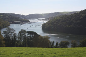 River Dart To Dartmouth